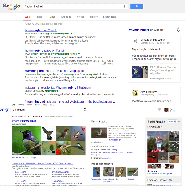 google #hummingbird vs bing
