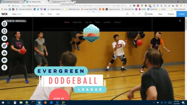 Wix SEO Review - Evergreen Dodgeball League