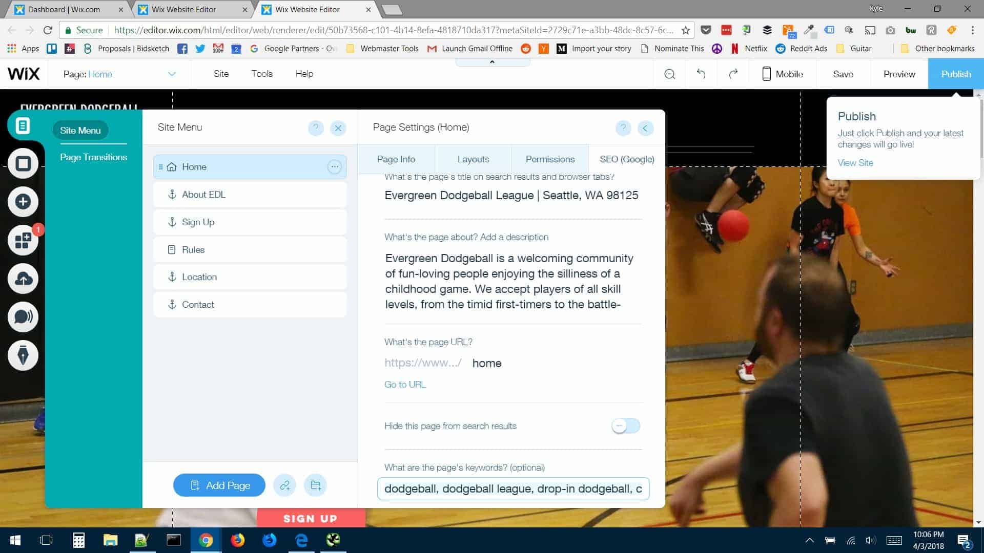 Evergreen Dodgeball Wix SEO Review